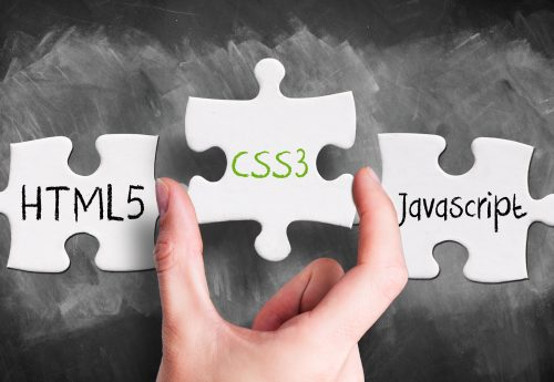 Everything You Need to Know About HTML Tags